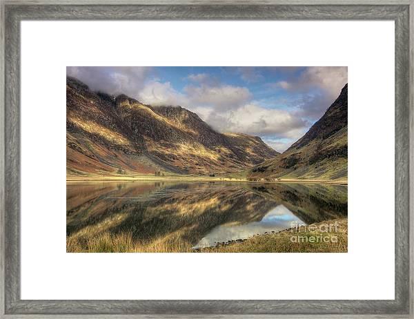 Nature's Design Framed Print