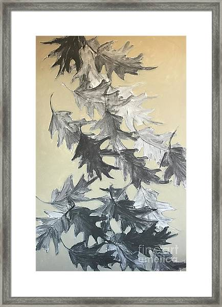 Natures Fallen Trash Framed Print