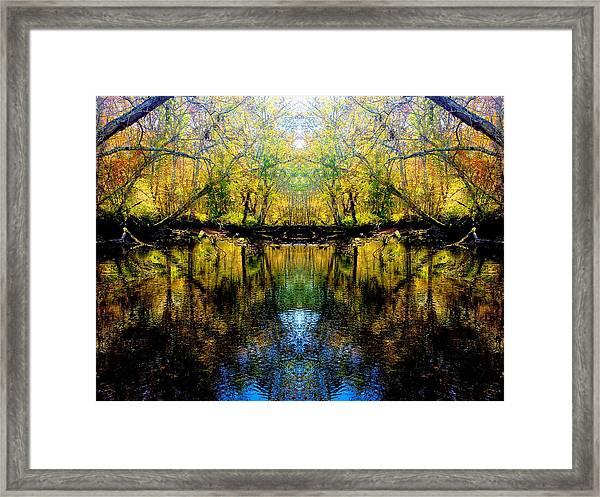 Natures Gate Framed Print
