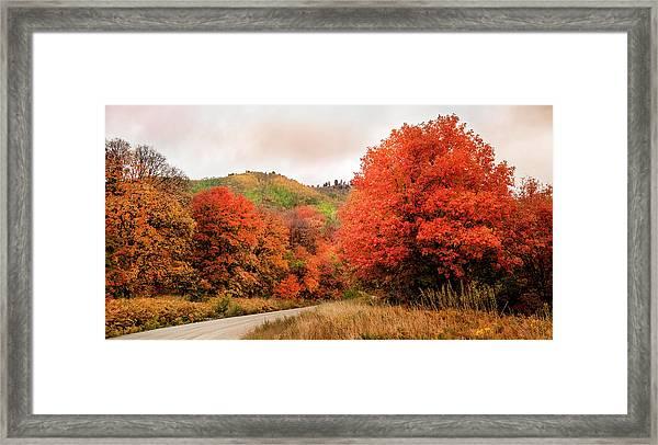 Nature's Palette Framed Print