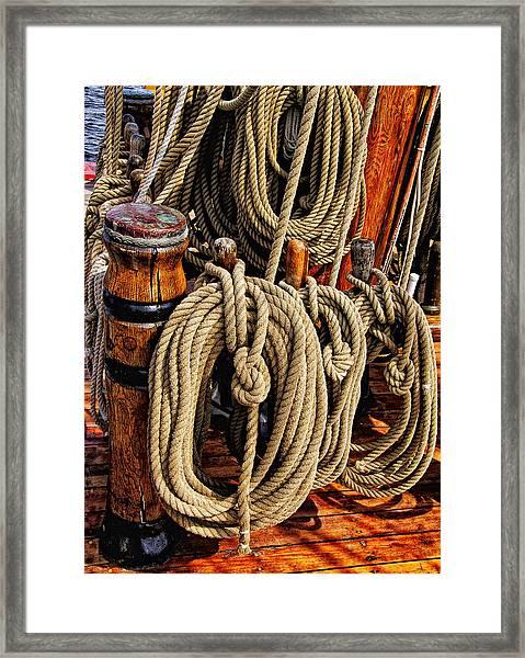 Nautical Knots 16 Framed Print