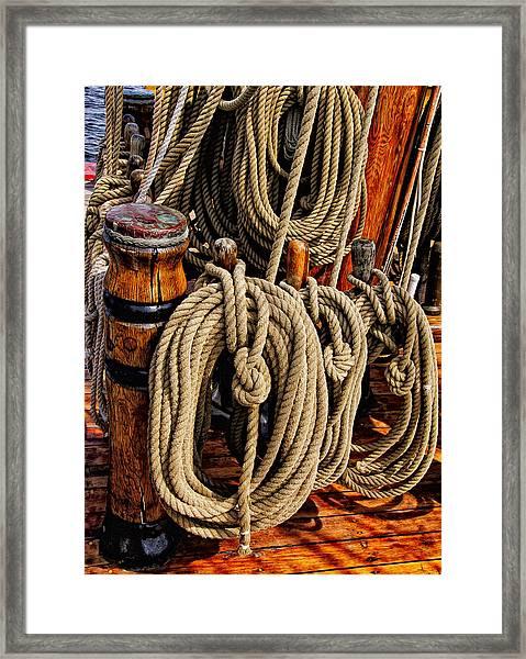 Nautical Knots 17 Oil Framed Print