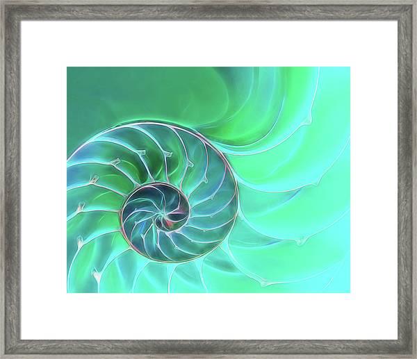 Nautilus Aqua Spiral Framed Print