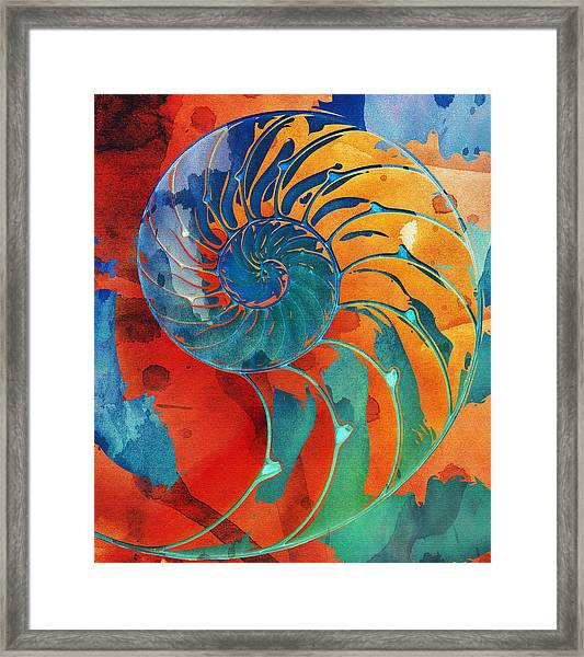 Nautilus Shell Orange Blue Green Framed Print