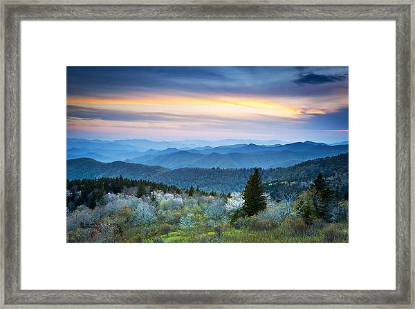 Nc Blue Ridge Parkway Landscape In Spring - Blue Hour Blossoms Framed Print