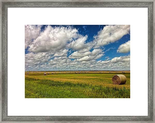 Nebraska Wheat Fields Framed Print