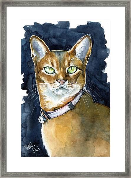 Nefertiti - Abyssinian Cat Portrait Framed Print