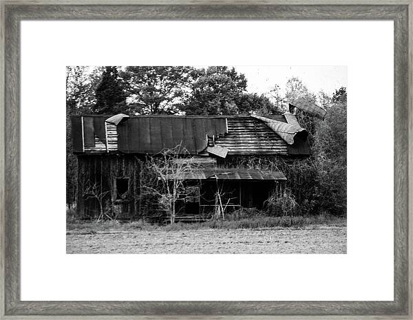 Neglect Framed Print