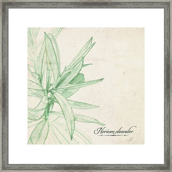 Framed Print featuring the digital art Nerium Oleander by Gina Harrison