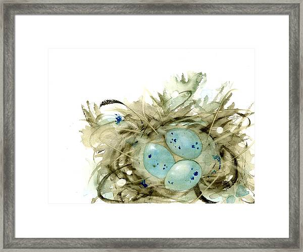 Nest And 3 Eggs Framed Print