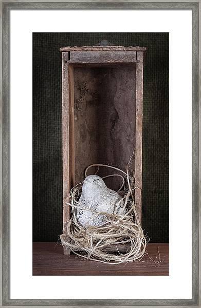 Nesting Bird Still Life Framed Print