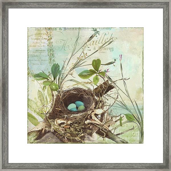 Nesting I Framed Print
