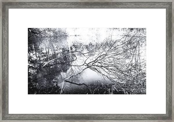 New Day Framed Print