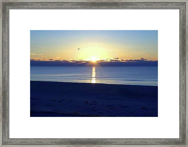 New Day I I Framed Print