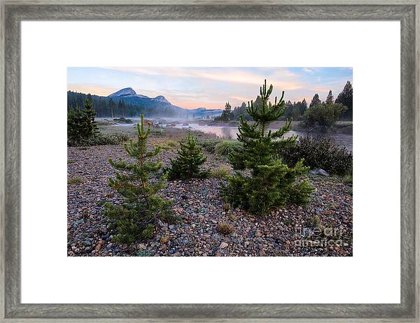 New Day Framed Print