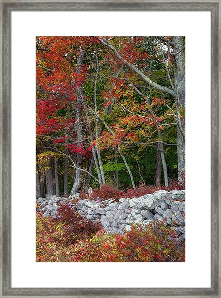 New England Stonewall Framed Print