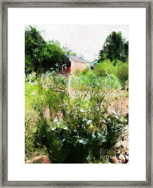 New Roots Framed Print