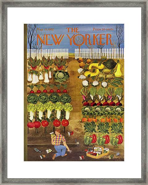 New Yorker May 17 1952 Framed Print