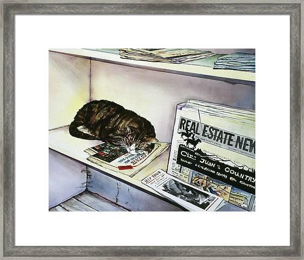 Newpaper Cat Framed Print
