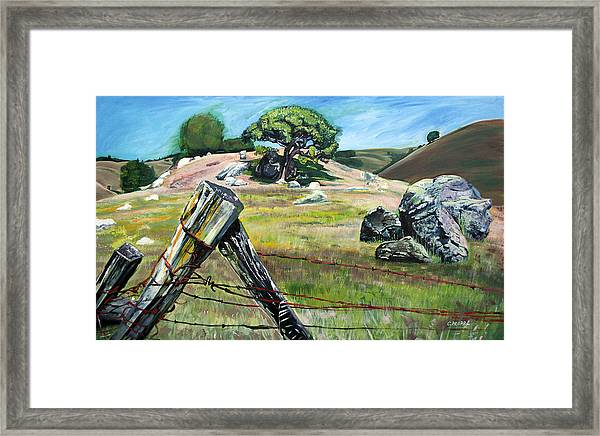 Nicasio Fence Post Framed Print by Colleen Proppe