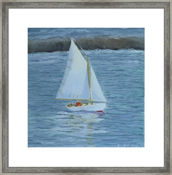 Nice Day For A Sail Framed Print
