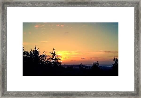 Night Beauty Framed Print