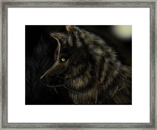 Night Silent Wolf Framed Print