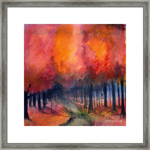 Night Time Among The Maples Framed Print