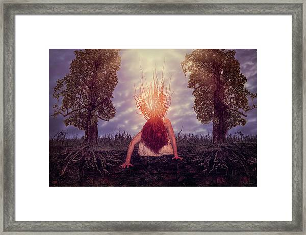 No Earthly Roots Framed Print