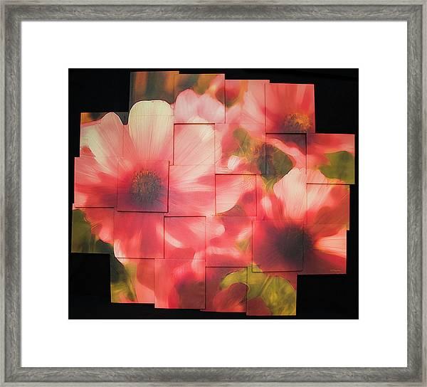 Nocturnal Pinks Photo Sculpture Framed Print