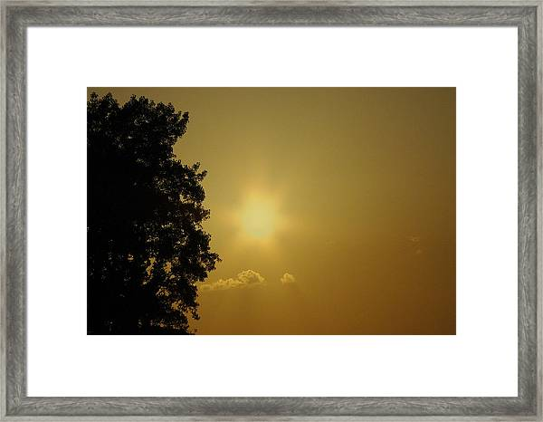 Not Your Average Mellow Yellow Framed Print