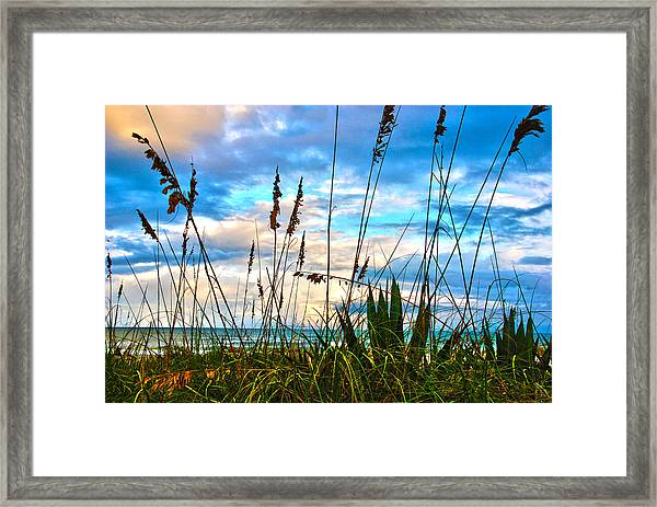 November Day At The Beach In Florida Framed Print
