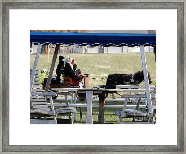 November Pony Cart Fun Framed Print