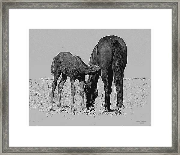 Nurture And Nourishment Framed Print
