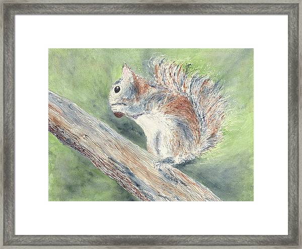 Framed Print featuring the painting Nut Job by Kathryn Riley Parker