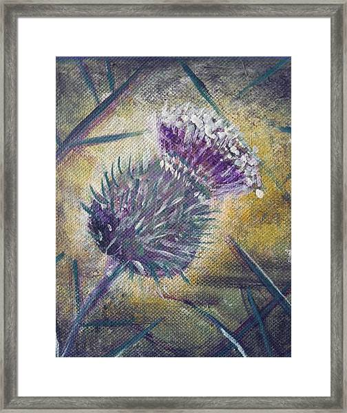 O' Flower Of Scotland Framed Print