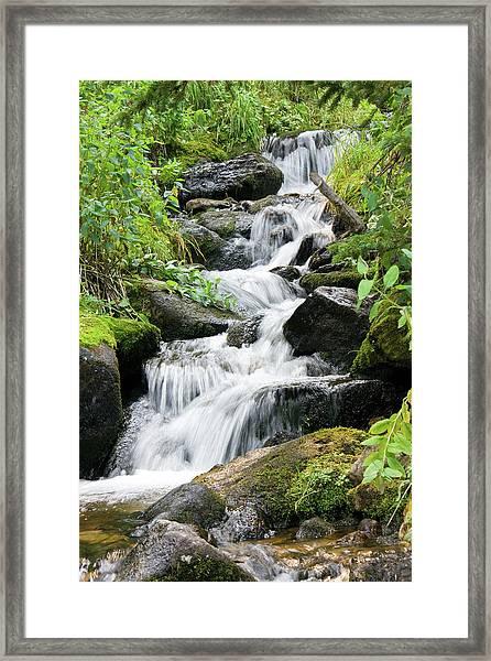 Oasis Cascade Framed Print