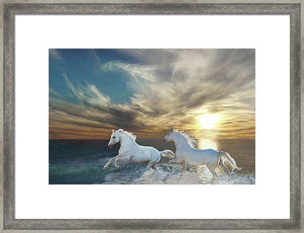 Ocean Play Framed Print