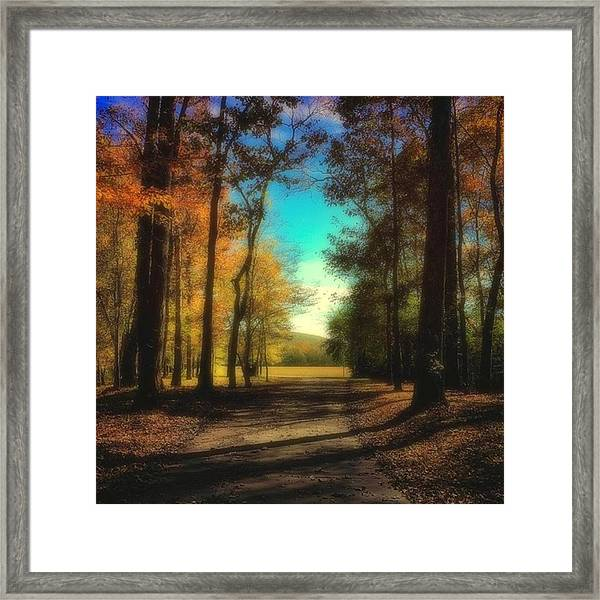 October Path Framed Print