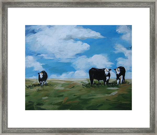 Odd Cow Out Framed Print