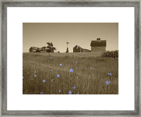 Framed Print featuring the photograph Odell Farm V by Dylan Punke