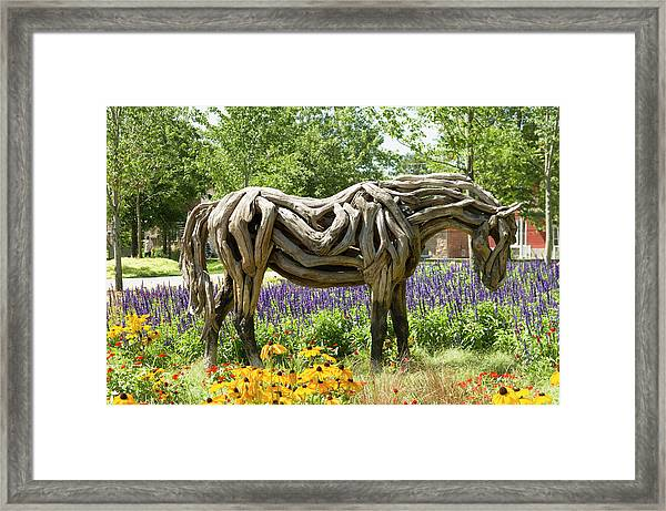 Odyssey The Horse Sculpture Made Of Driftwood By Heather Jansch. Framed Print