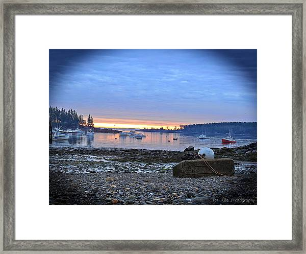 Office Of The Sea Framed Print