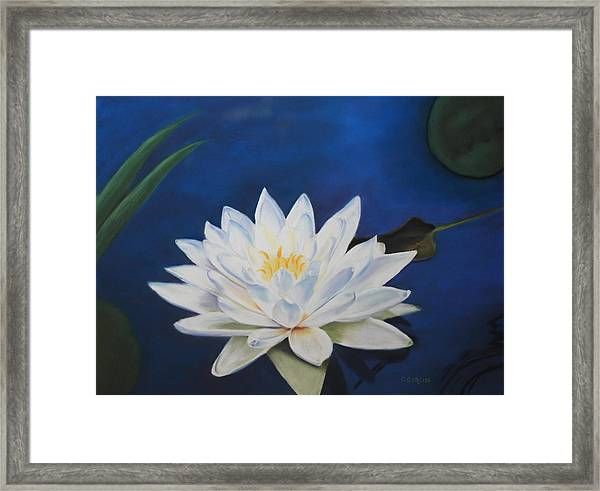 Oh Lily Framed Print