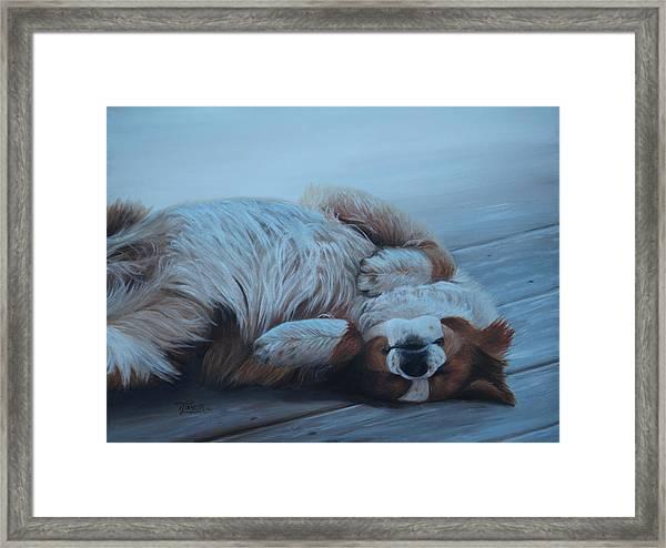Dog Gone Tired Framed Print