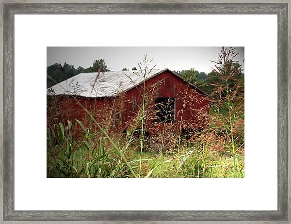 Old Barn Xii Framed Print