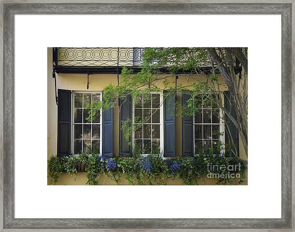 Old Charleston Window  Framed Print
