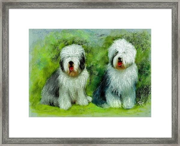 Old English Sheepdog Framed Print