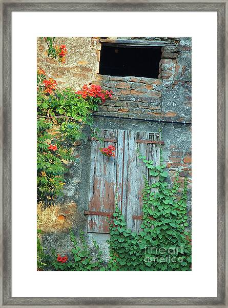Old Farm Door Framed Print