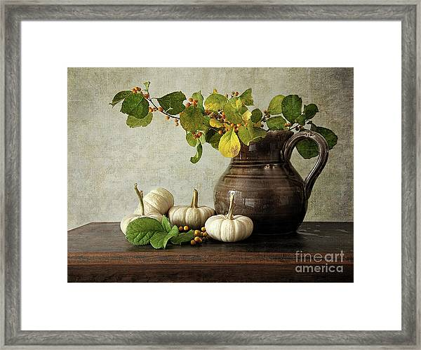 Old Pitcher With Gourds Framed Print